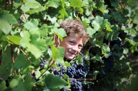 Mathias le lutin des vignes !