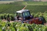 Rapatriement des caisses de raisin en tracteur agricole.