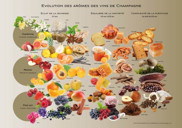 Carte_Des_Aromes_FR.jpg